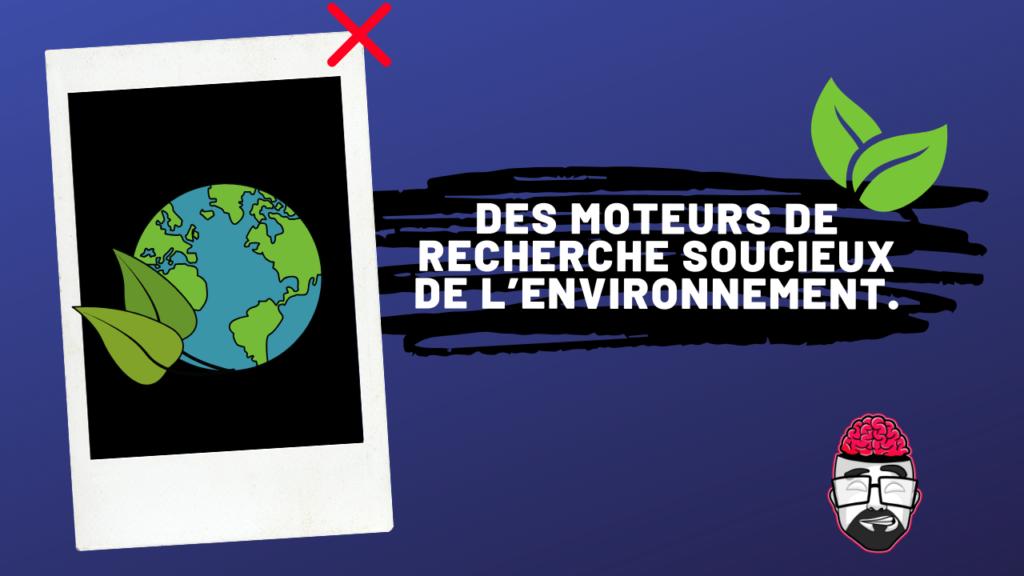 Ecosia, Lilo des moteurs de recherche soucieux de l'environnement. 1